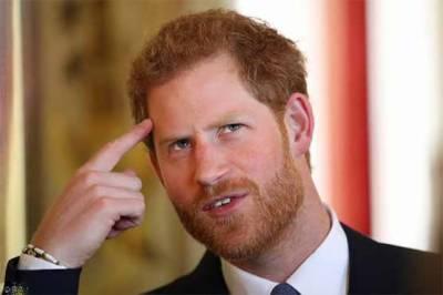 مکھی سے پریشان برطانوی شہزادہ ہیری تقریر بھول گئے