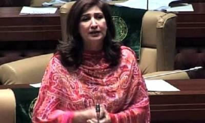 فوزیہ قصوری کراچی میں عمران خان کیخلاف الیکشن لڑیں گی، شہلا رضا