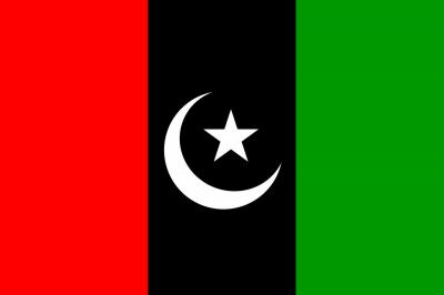 پی پی پی نے پنجاب میں قومی اور صوبائی اسمبلیوں کے امیدوار فائنل کر لیے