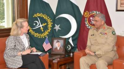 امریکا دہشت گردی کے خلاف پاک فوج کی قربانیوں کو سراہتا ہے، امریکی نائب معاون وزیر خارجہ