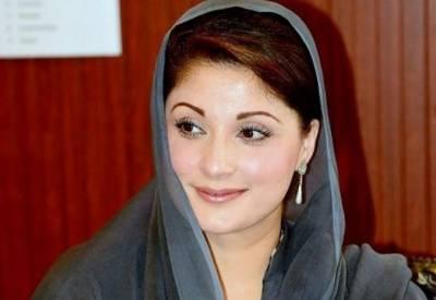 علی پرویز ملک نے مریم نواز کی جگہ الیکشن لڑنے کی درخواست دے دی