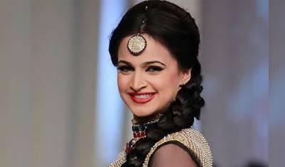 اداکارہ نور نے ایف بی آر کو ٹیکس جمع کرادیا