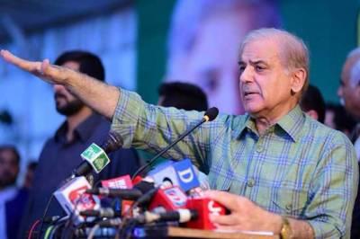 الیکشن میں کامیاب ہو کر نواز شریف کو جیل سے باہر نکالیں گے: شہباز شریف