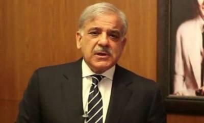 شہباز شریف نے عام انتخابات کے نتائج کو مسترد کر دیا