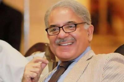 حلف اٹھانے کے بعد انتخابی دھاندلی کے خلاف احتجاج کریں گے، شہباز شریف
