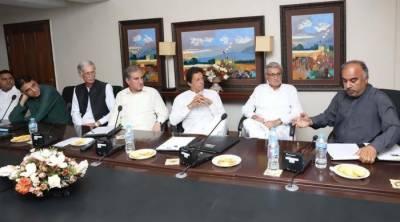 تحریک انصاف آج عمران خان کو وزیراعظم کا امیدوار نامزد کرے گی