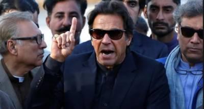 کئی دہائیوں سے بیرون ملک مقیم عمران خان کے مداح کی خصوصی گاڑی میں واپسی