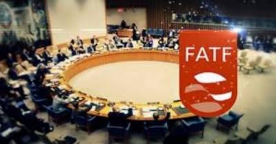 گرے لسٹ سے نکلنے کیلئے پاکستان کی مدد پر تیار ہیں : یورپی یونین