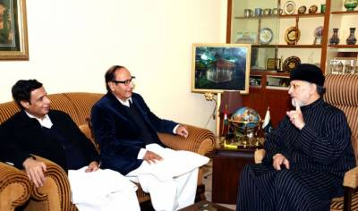 عارف علوی پورے پاکستان کے صدر ہیں، وفاق کی صحیح نمائندگیکریں گے: چودھری برادران