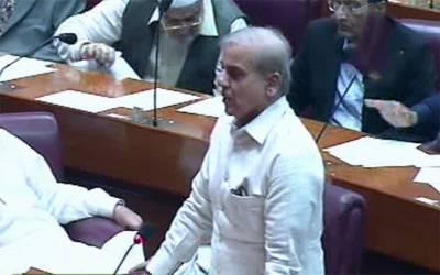 پارلیمانی کمیشن انتخابی دھاندلی کے متعلق جلد اپنی رپورٹ ایوان میں پیش کرے:شہباز شریف
