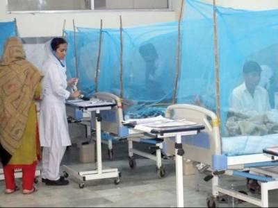 راولپنڈی: 24 گھنٹوں کے دوران مزید 17 مریضوں میں ڈینگی کی تصدیق