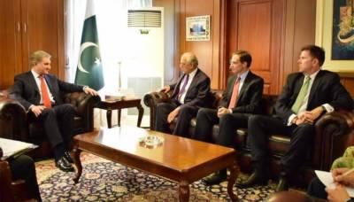 شاہ محمود سے امریکی نمائندہ خصوصی زلمے خلیل کی ملاقات، اہم امور پر تبادلہ خیال