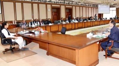 وفاقی کابینہ نے بجلی کی قیمت بڑھانے اور ای سی سی کے فیصلوں کی منظوری دیدی