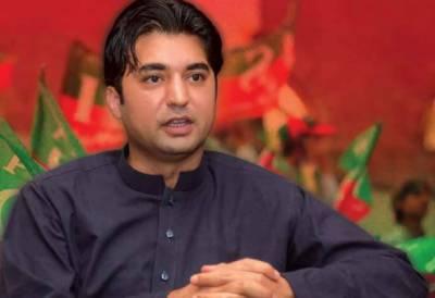 حکومت ایک کروڑ نوکریاں دینے کے وعدے پر عملدرآمد کر رہی ہے، مراد سعید