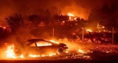 کیلیفورنیا کے جنگلات میں لگی آگ سے ہلاکتوں کی تعداد 50 ہوگئی