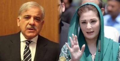 سرکاری جہاز کا استعمال : حکومت کا مریم اور شہباز شریف کیخلاف نیب سے تحقیقات کرانے کا اعلان