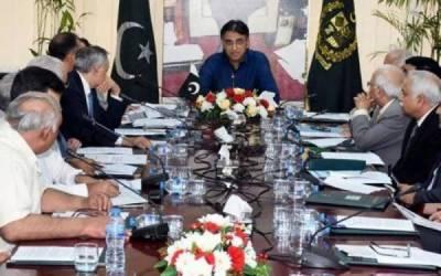 اقتصادی رابطہ کمیٹی نے 5 لاکھ ٹن گندم برآمد کرنے کی منظوری دے دی