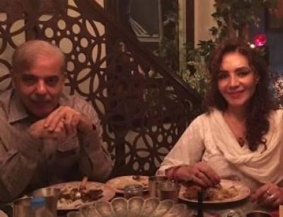 شہباز شریف سے ملاقات نے تہمینہ درانی کو پریشان کردیا