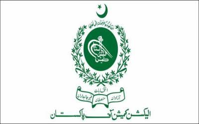 الیکشن کمیشن نے مسلم لیگ ن کے اثاثوں کی تفصیلات ظاہر کر دیں