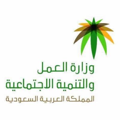 سعودی عرب ، وزارت محنت نے مزید پانچ شعبوں میں سعودائزیشن کرنے کا اعلان کر دیا