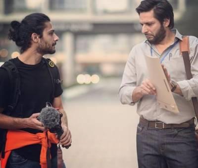 شاہد آفریدی دبئی میں ٹیکسی ڈرائیور بن گئے