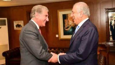امریکی نمائندہ خصوصی کی شاہ محمود قریشی سے ملاقات، اہم امور پر تبادلہ خیال