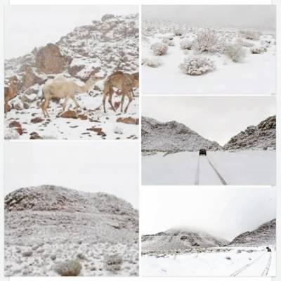 سعودی عرب کے شمالی علاقوں میں برفباری کا امکان ہے ، محکمہ موسمیات