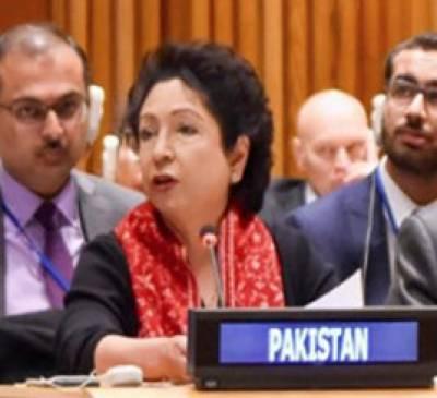 'سلامتی کونسل میں توسیع چند ممالک کے بجائے تمام ممالک کے مفاد میں ہونی چاہیے'