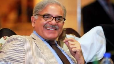شہباز شریف کی 3 قائمہ کمیٹیوں کی رکنیت ختم