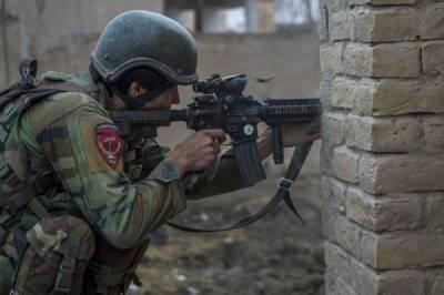 افغانستان میں 8 پاکستانی جاں بحق، دفترخارجہ نے تصدیق کر دی