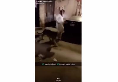 سعودی عرب میں منشیات کے سمگلر نے اپنی حفاظت کے لیے کیارکھا تھا ؟ جان کر دنگ رہ جائیں گے