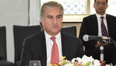 چین پاکستان کوایکسپورٹ کا مرکز بنانا چاہتا ہے، شاہ محمود قریشی