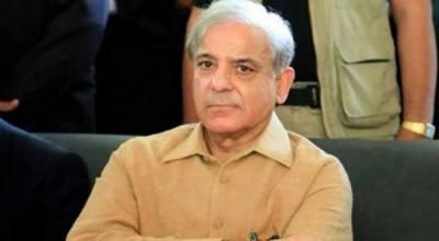 عمران خان حکومت ناکام,غریب عوام کی مشکلات میں اضافہ کر دیا, شہباز شریف