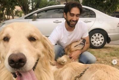 معروف اداکار علی رحمان خان کی اپنے پرستاروں سےپالتو کتوں پر رحم کی اپیل
