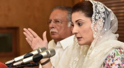 مریم نواز نے وزیر اعظم عمران خان کو ڈرپوک قرار دے دیا