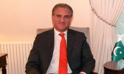 بجٹ کا پاس ہونا حکومت کی بڑی کامیابی ہے، شاہ محمود قریشی