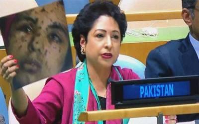 بھارت نے مقبوضہ کشمیر کو اندھیروں میں دھکیل دیا:ملیحہ لودھی