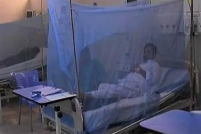 پنجاب میں ڈینگی بے قابو، مریضوں کی تعداد ڈھائی ہزار سے تجاوز کر گئی