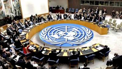 سلامتی کونسل کے 5 ارکان کا ترکی سے شام میں فوجی آپریشن روکنے کا مطالبہ