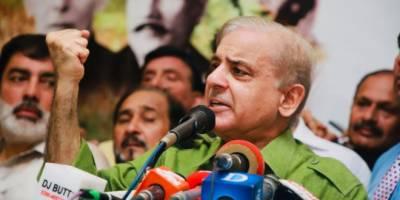 اسلام آباد میں مل کر پاکستان زندہ باد کا نعرہ لگائیں گے :شہبا زشریف