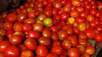 ٹماٹر کے بحران کے پیش نظر ایران سے ٹماٹروں کی درآمد شروع ہو گئی