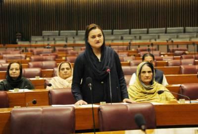 قومی اسمبلی اجلاس، مریم اورنگزیب اسپیکر سمیت حکومتی اراکین سے الجھ پڑیں