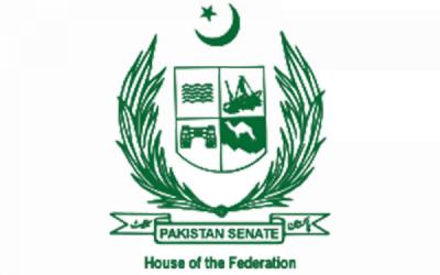 سینیٹ میں نیا پاکستان ہاﺅسنگ بل منظور کر لیا گیا