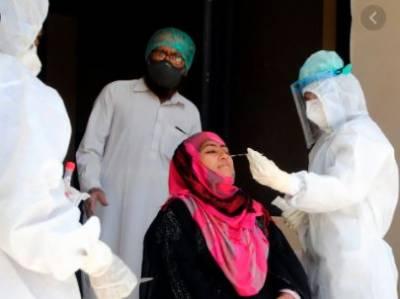 پاکستان میں کورونا کیسز کی تعداد3 لاکھ3ہزار89ہوگئی،665نئے کیسز رپورٹ
