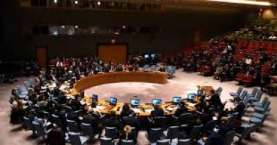 متحدہ عرب امارات نے سلامتی کونسل کی رکنیت کیلئے امیدوار بننے کا اعلان کر دیا