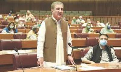 Shah Mehmood Qureshi, National Assembly