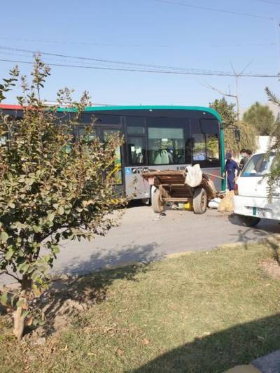 Peshawar BRT bus collided with a donkey cart