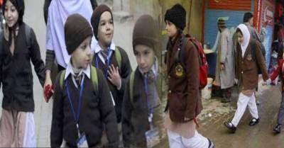 Education Minister Murad Ross opposes winter holidays