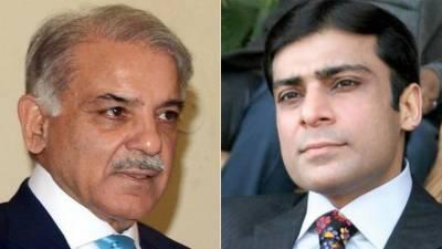 Pakistan,Punjab Government,Shahbaz sharif, Jail, Hamza shahbaz