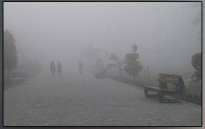 Extreme cold, fog reigns in Lahore, motorway closed